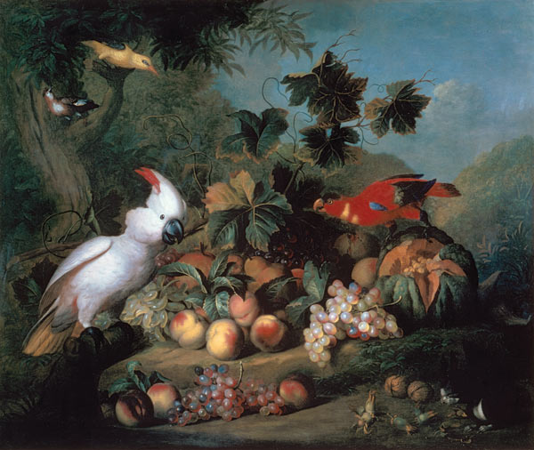 bogdani_fruit_birds