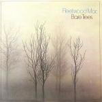 Fleetwood Mac Bare Trees
