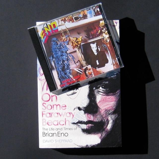 David Sheppard Brian Eno