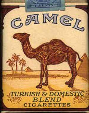 camel cigs