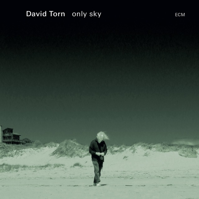 Torn, David - Only sky