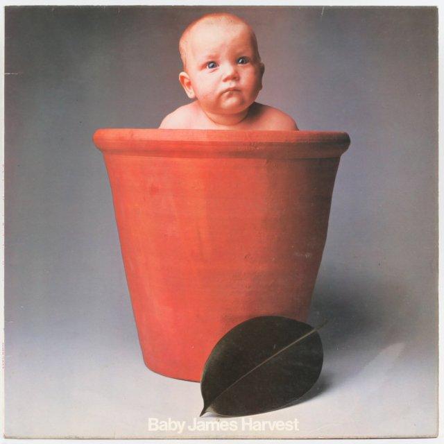 Baby James Harvest