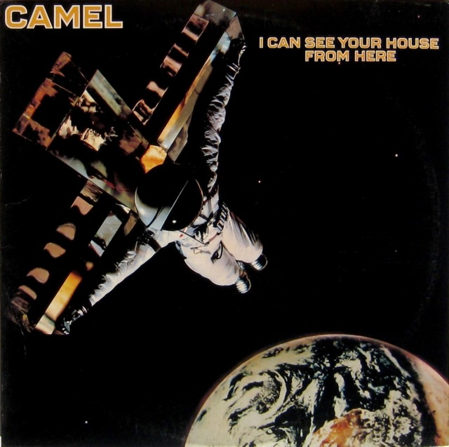 Camel I Can See Your House