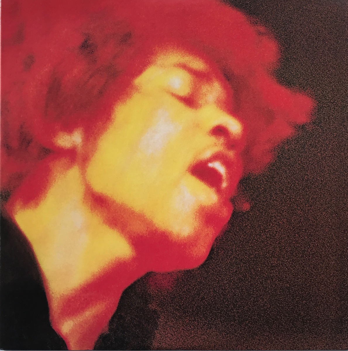 HAVE YOU EVER BEEN TO ELECTRIC LADYLAND?